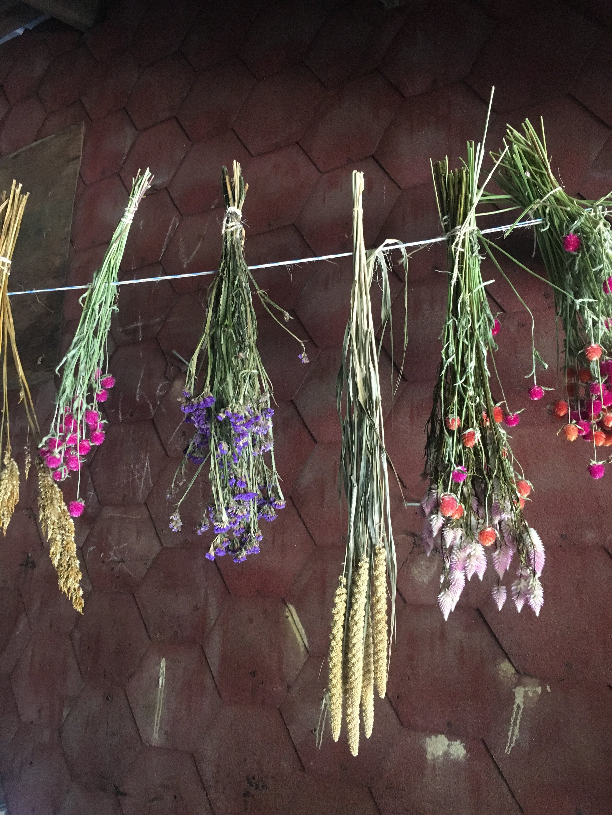 We dried a lot of flowers this year, and with the slower days, we've had time to begin work on Autumn wreaths! We'll be bringing a few to market this weekend, and will have more available in the weeks to come. We're excited to share them with you!