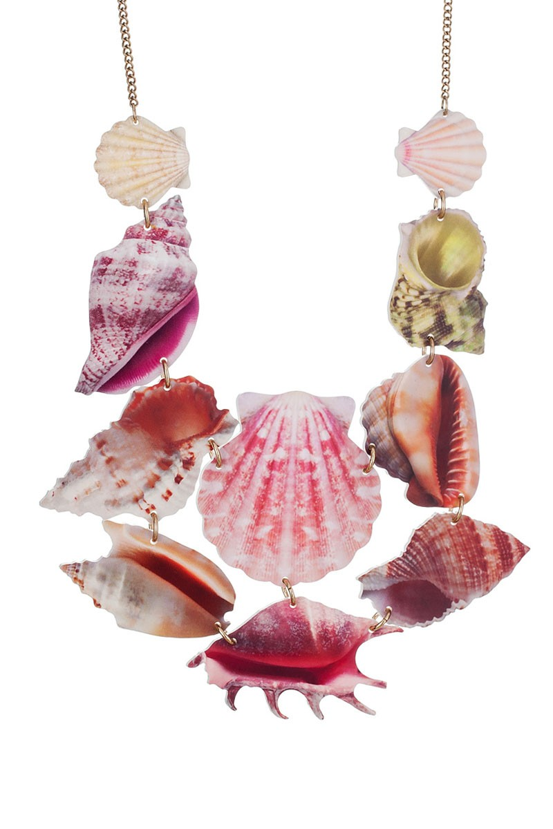 An exotic shell collection is supersized and digitally photo-printed onto smooth white Perspex, capturing the intricate texture and colouring of these specimens.