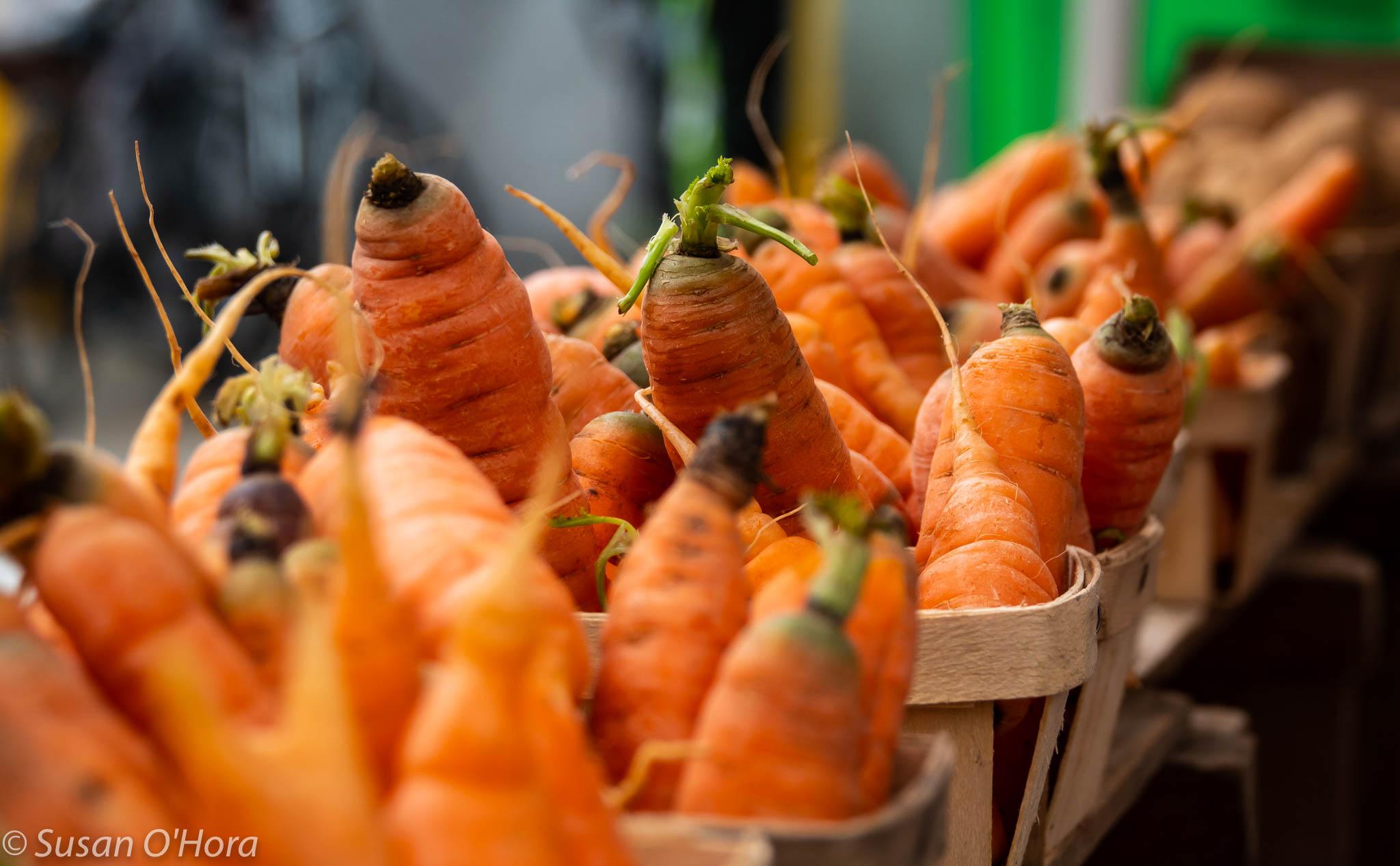DSC03051_Carrots.jpg