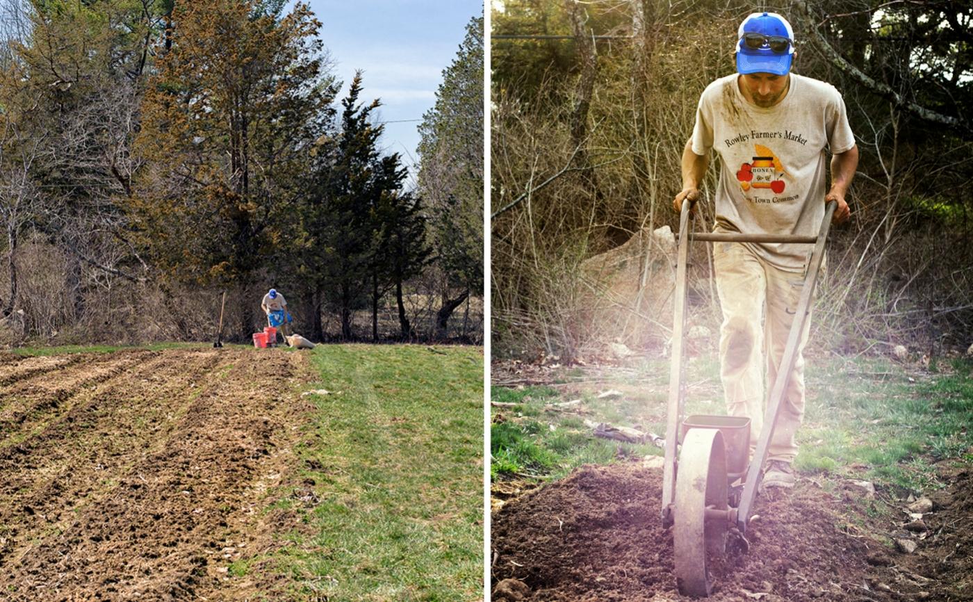 Alex Cecchinelli works his West Gloucester farm. (Photographs by Paul Cary Goldberg)