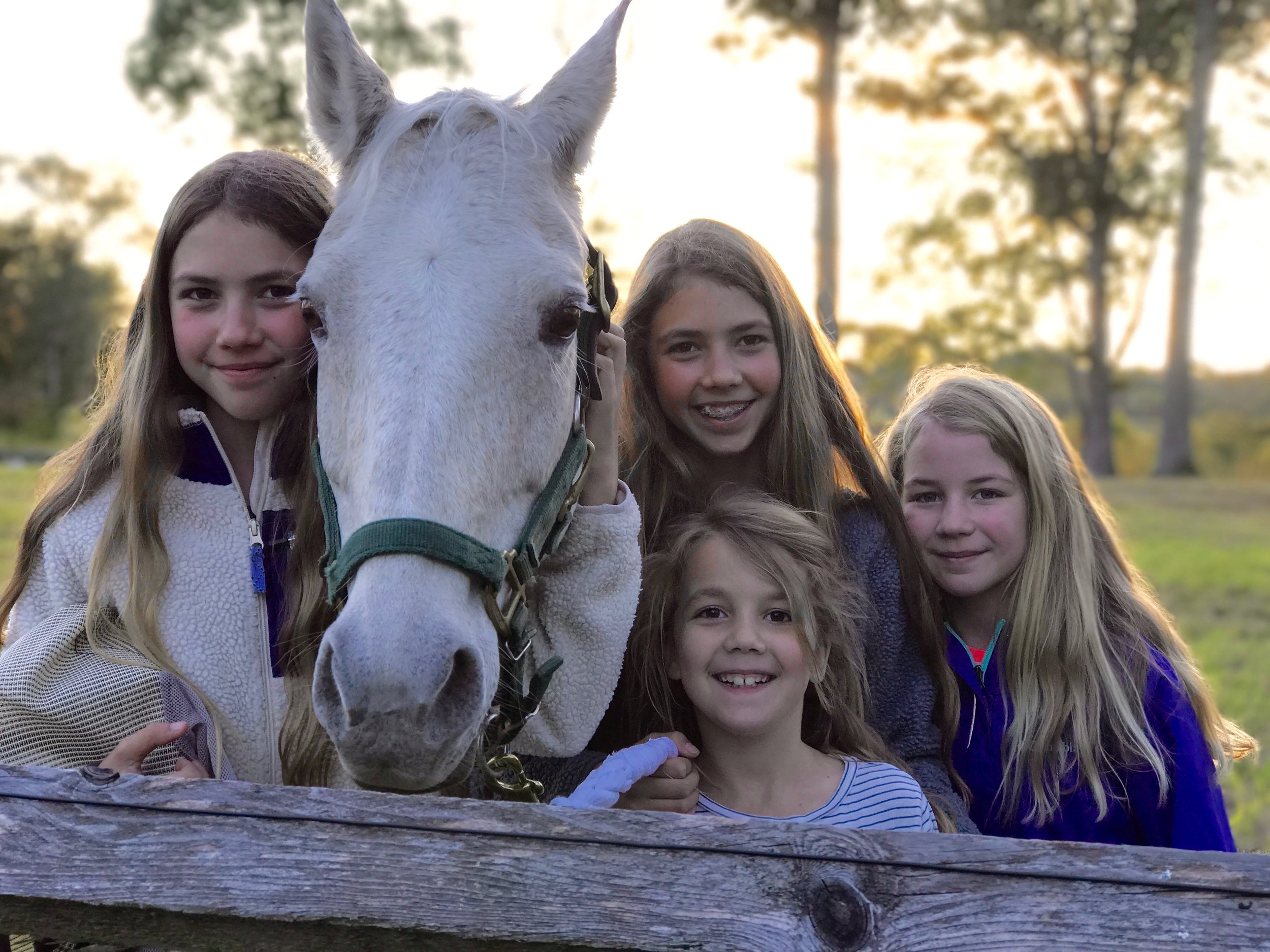 The Borgman daughters love the rural life. From left: Ava, Skittles, Ella, Mae, and Lila.