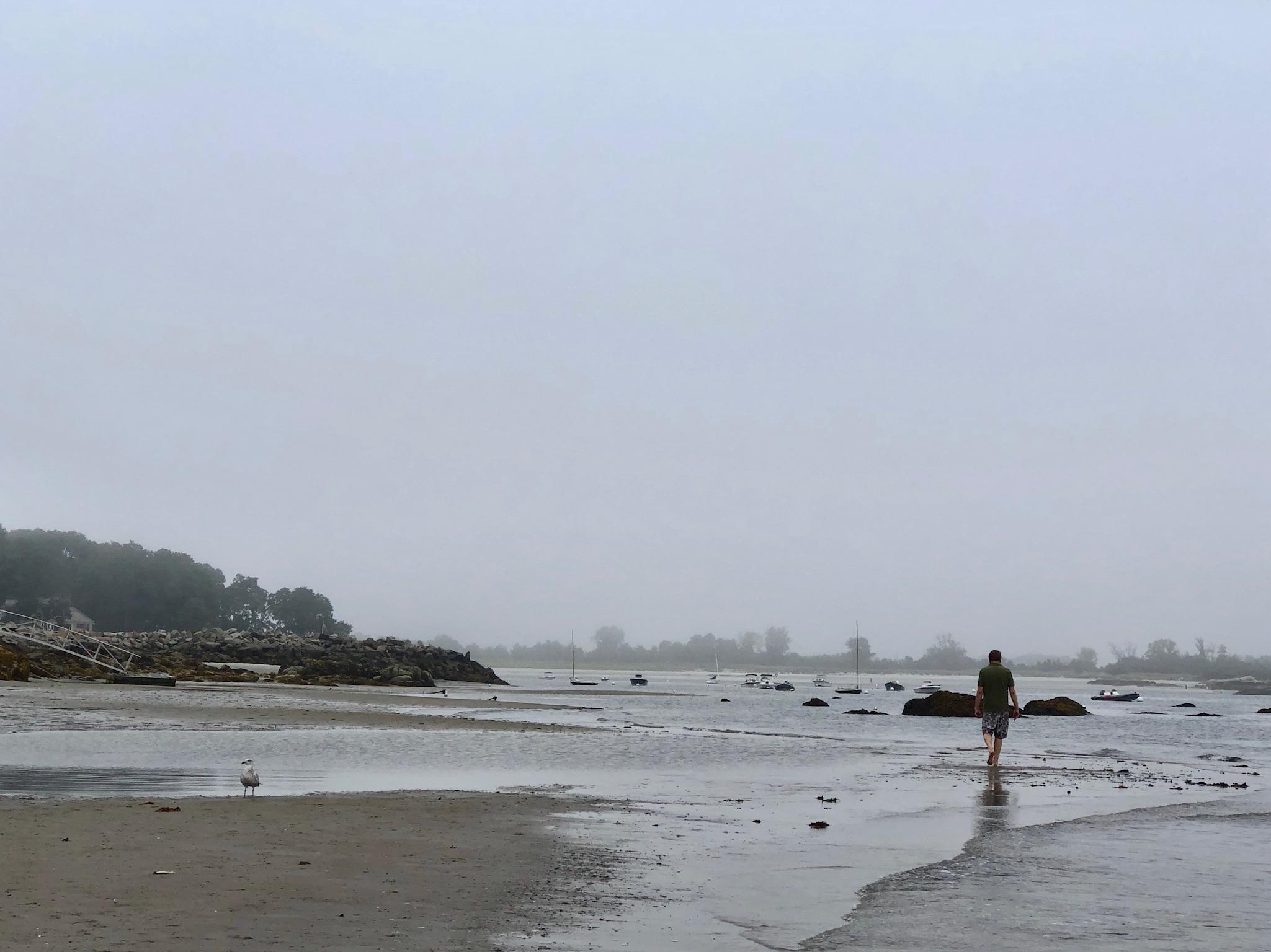 Fraser strolls a Cape Ann beach.