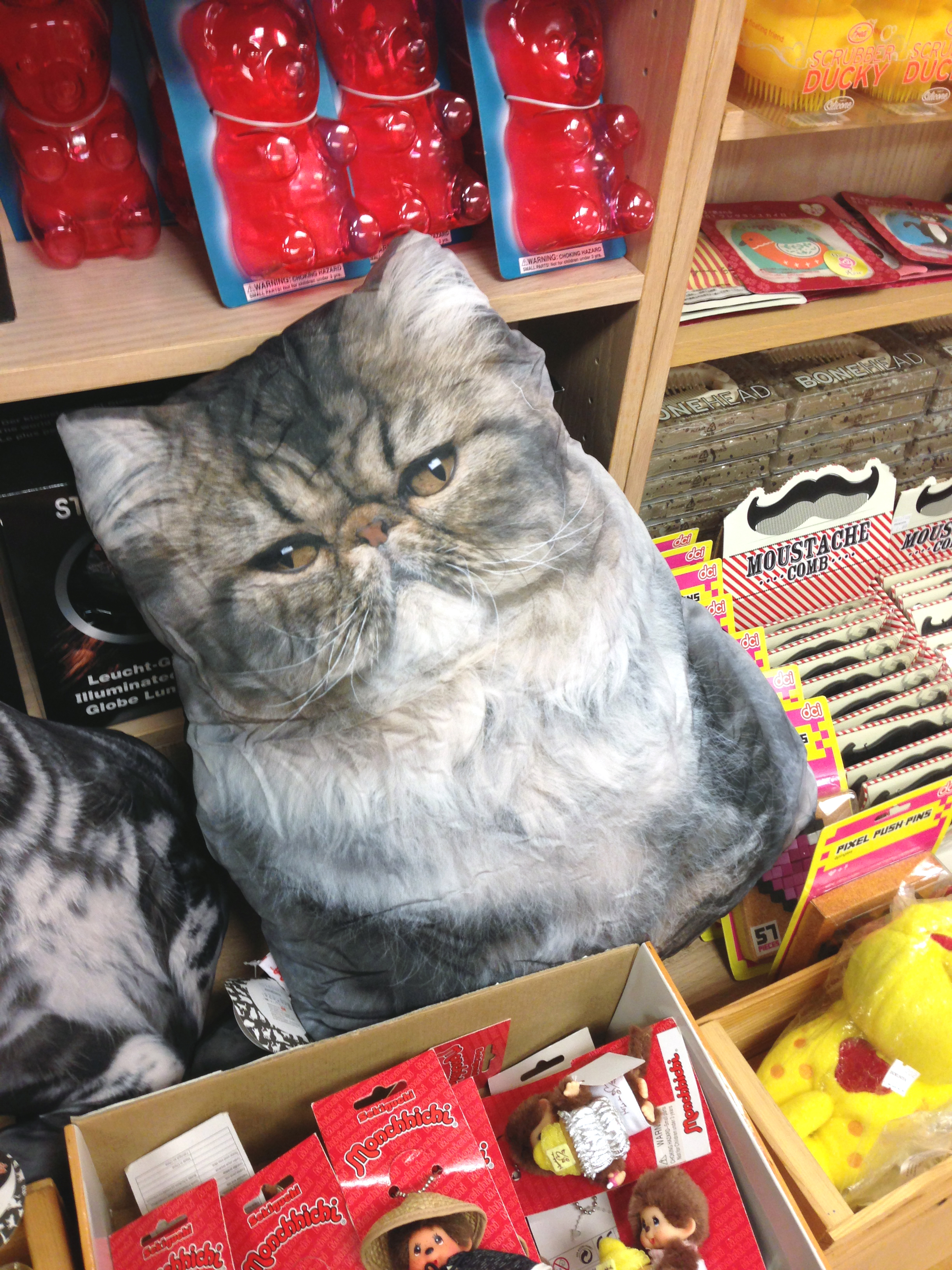 LOLCat pillow and other Japanese oddities