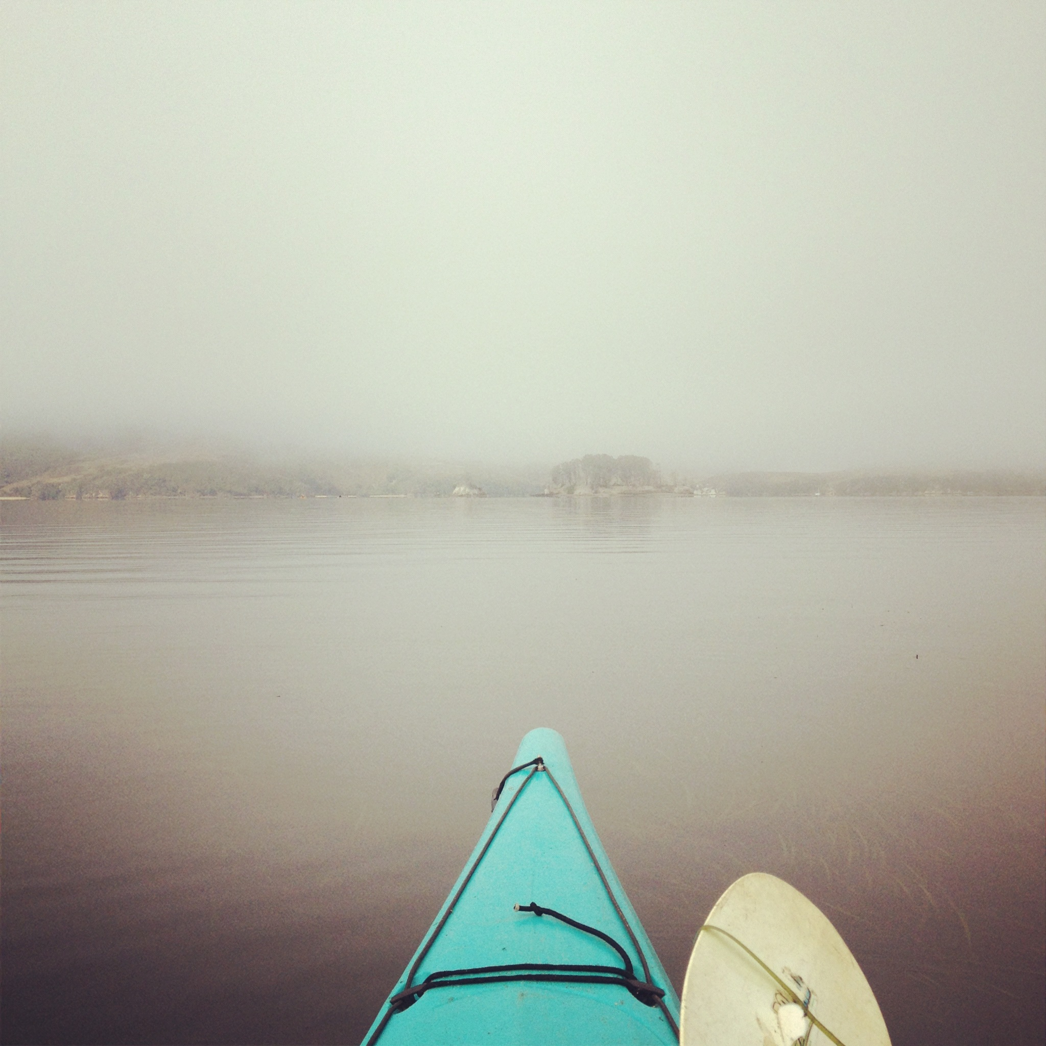 Heading out into Tomales Bay in the fog
