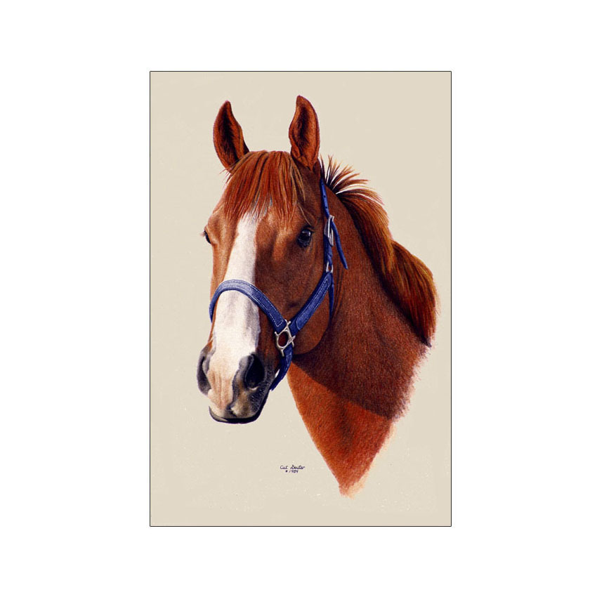 Jim's Mare - Original Sold