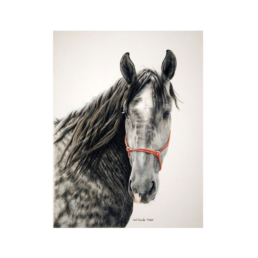 Percheron's Day Out - Original Available
