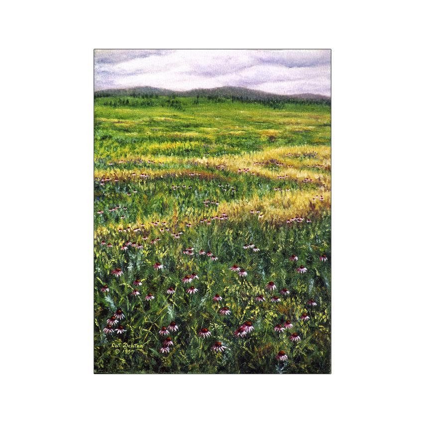 Pasture Cone Flowers - Original Sold