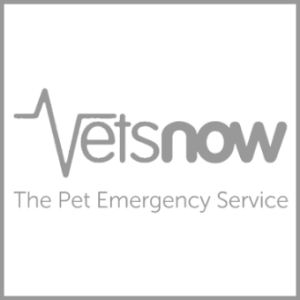 Improved response for Vets Now.