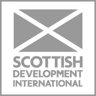 SDI infographic logo grey