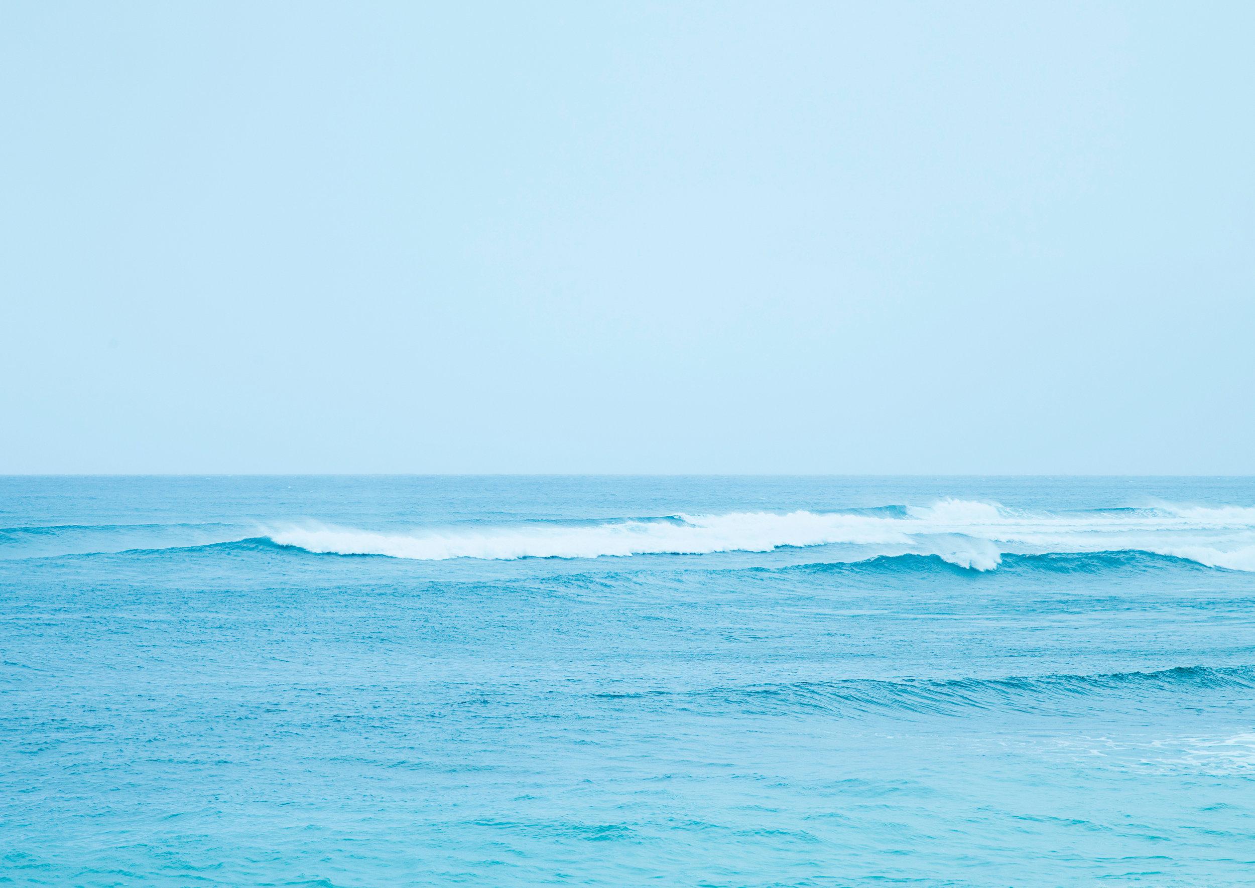 Maui-Web_MG_1315.jpg