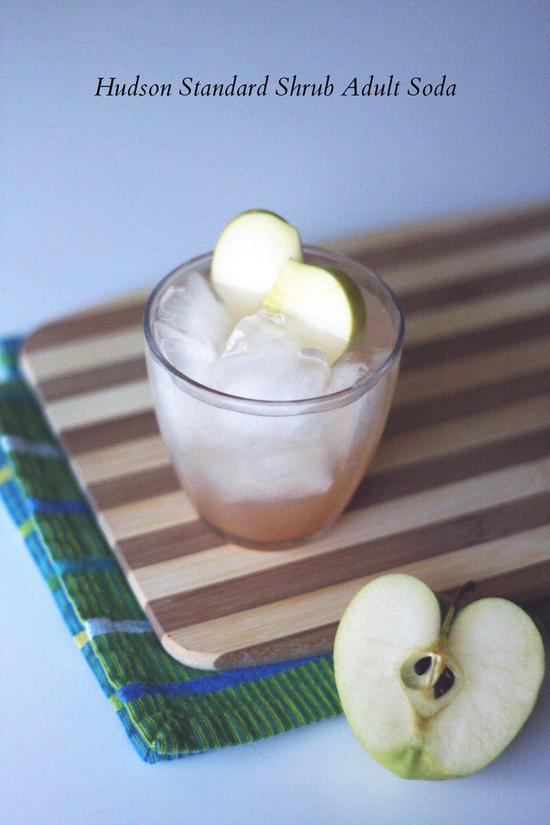 Hudson Standard Shrub Adult Soda | SavoryPantryBlog.com