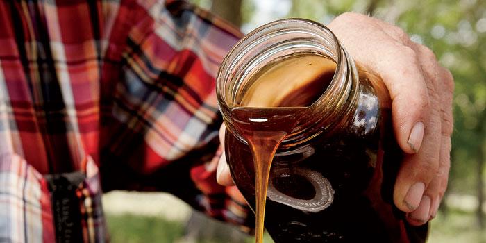 Sorghum Syrups Gains Popularity | SavoryPantryBlog.com