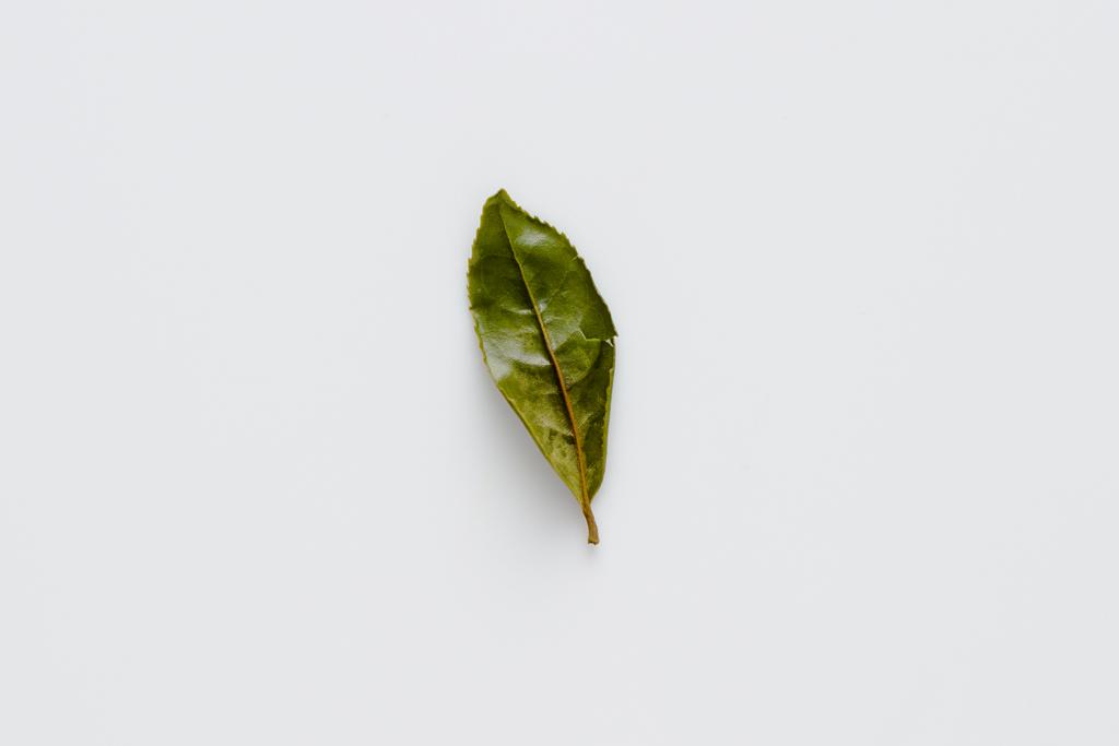 ACP2016_SongTea_Leaves-0107.jpg