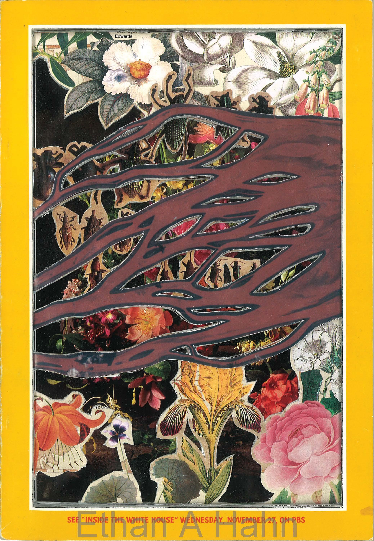 1996 Nov #2