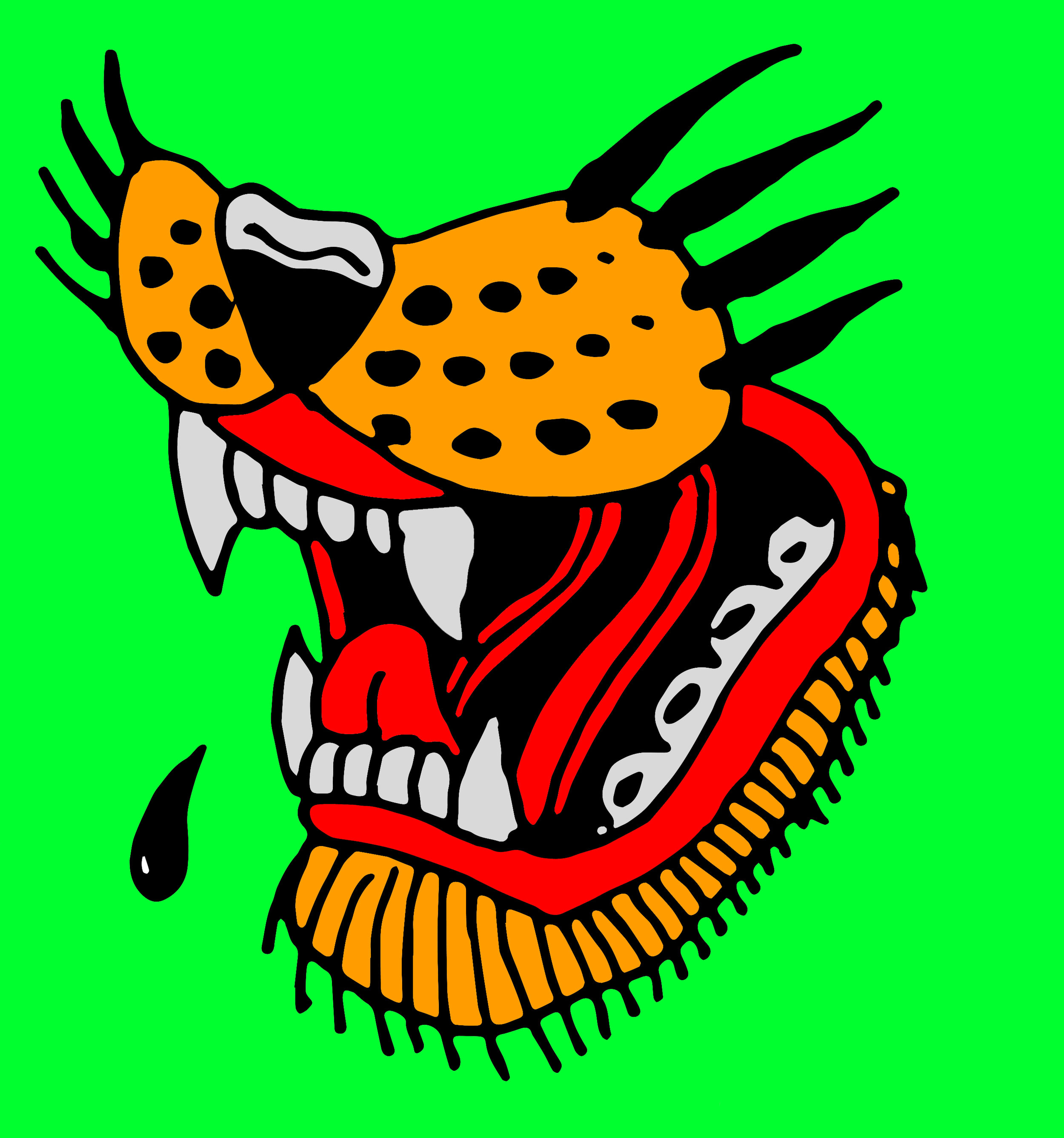 Tiger Mouth 1.jpg