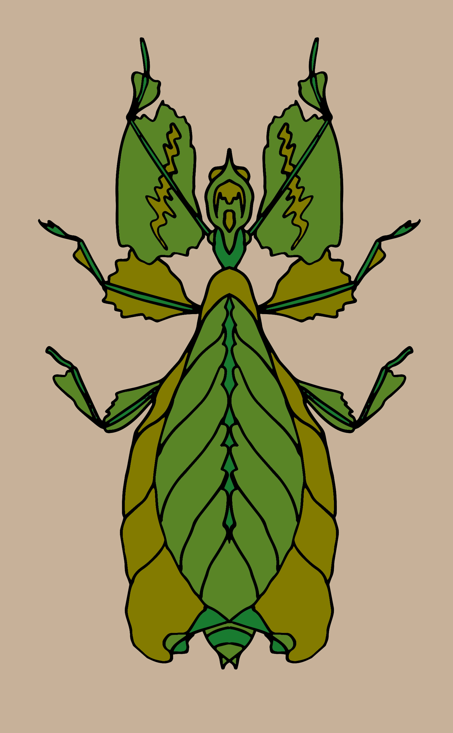 080719 Leaf Bug Color 1.jpg