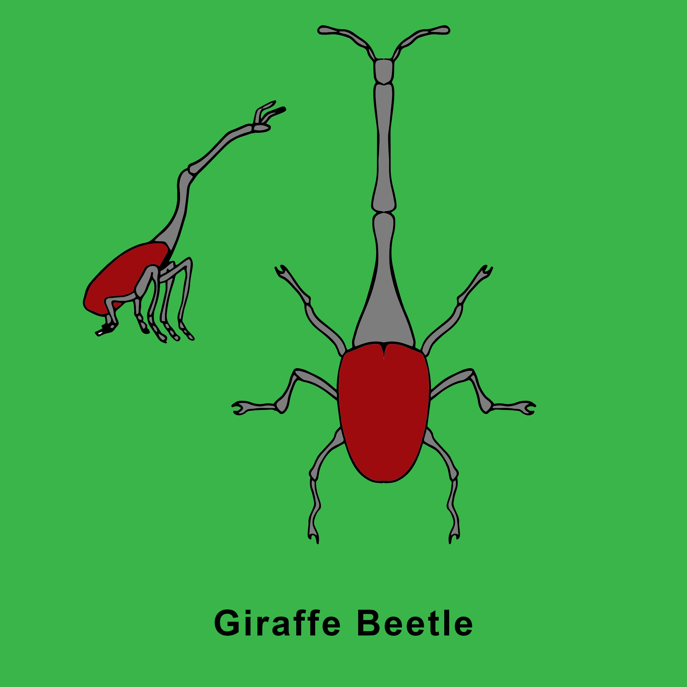 Giraffe Beetle Finished.jpg