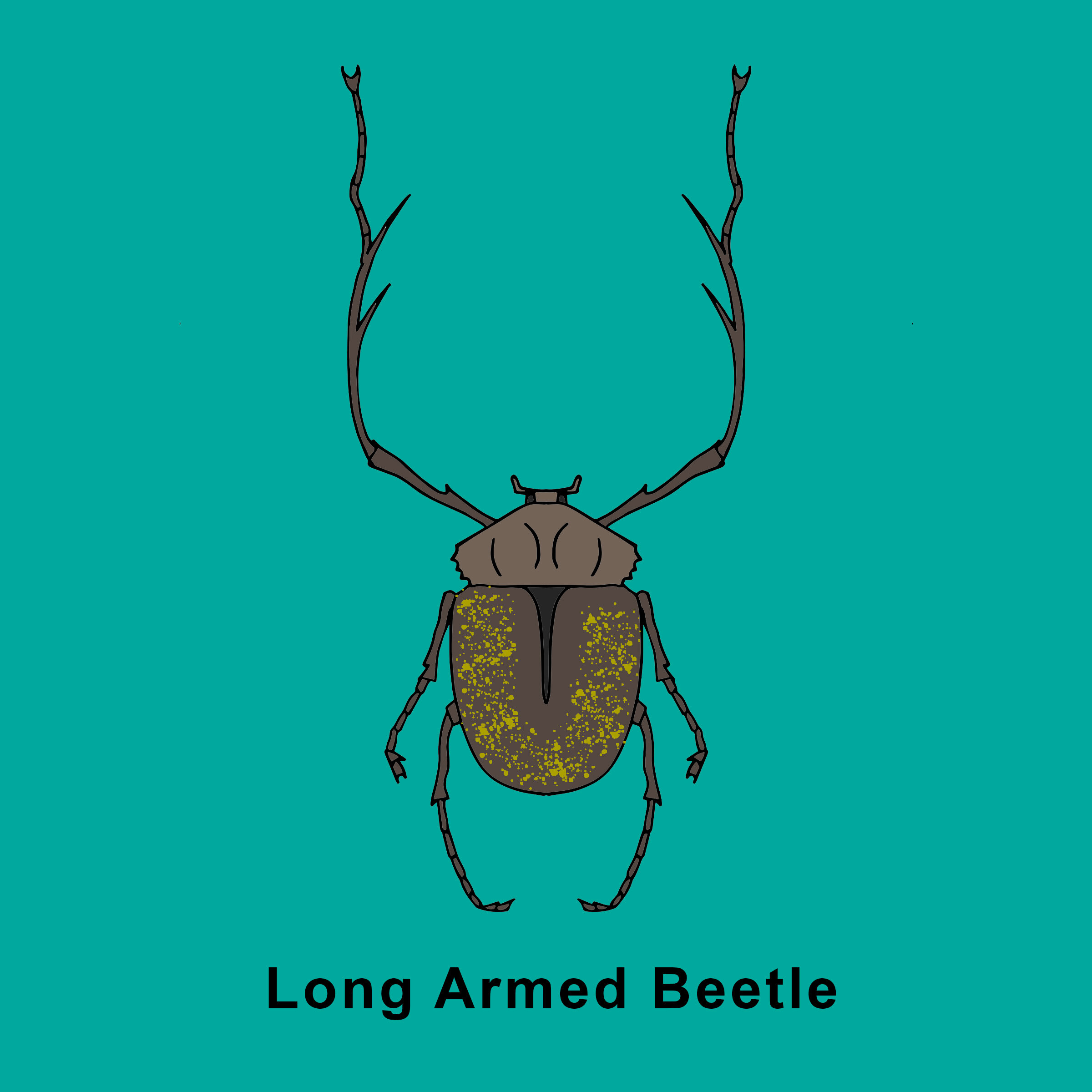 Long Armed Beetle Finished.jpg