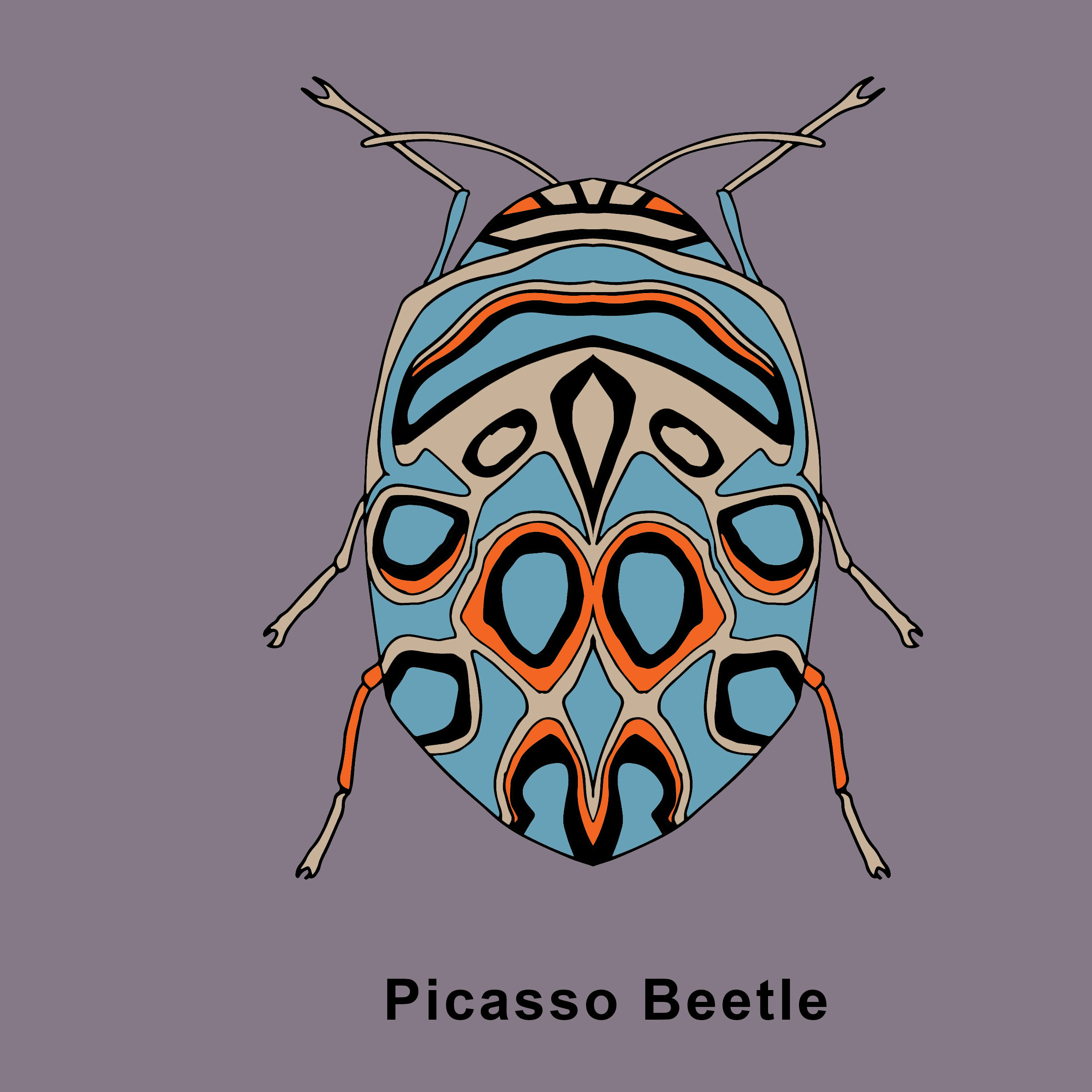 Picasso Beetle Finished .jpg