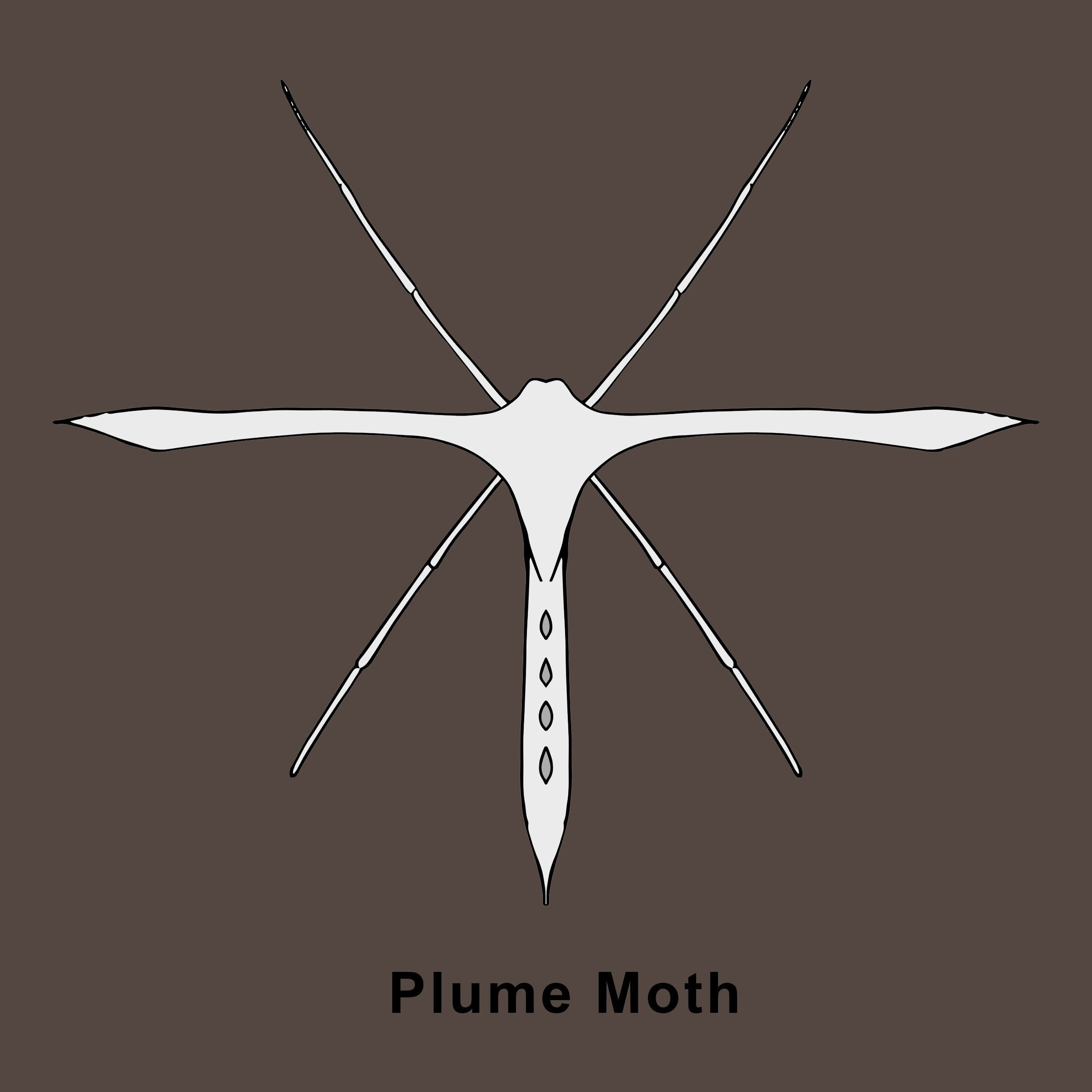 Plume Moth Finished.jpg