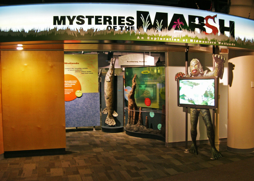 Mysteries Of The Marsh