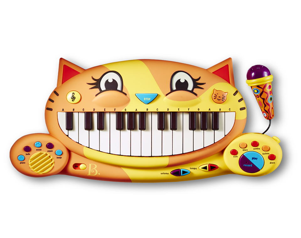 keyboardcat-sethiversonphoto.jpg