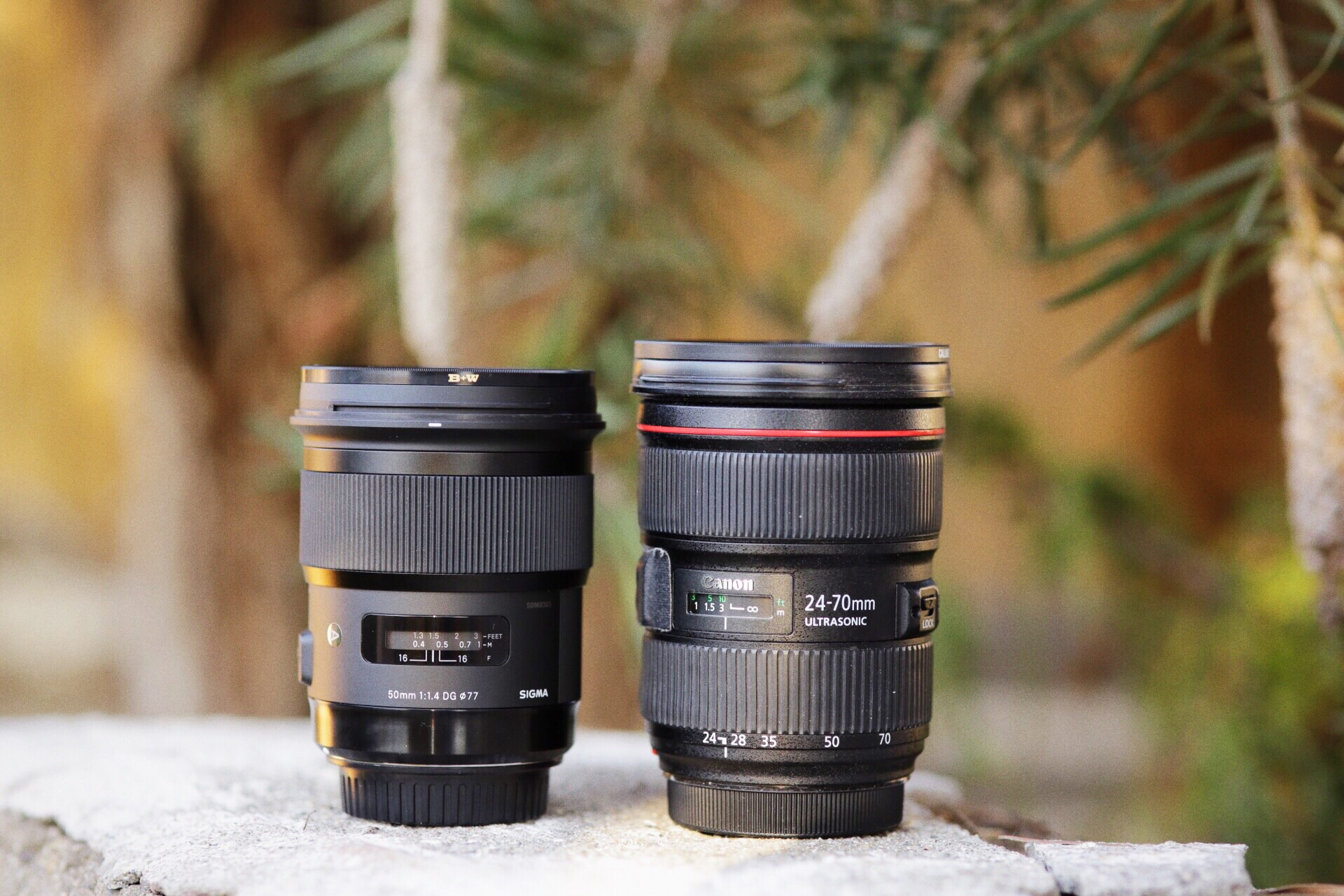 Sigma 50mm 1.4 Art next to the current 24-70mm f2.8 L as you can see it is quite close in size to the zoom.