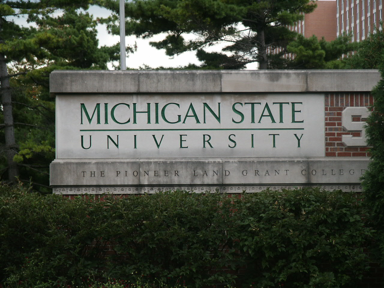 I currently work at Michigan State University. Go Green!