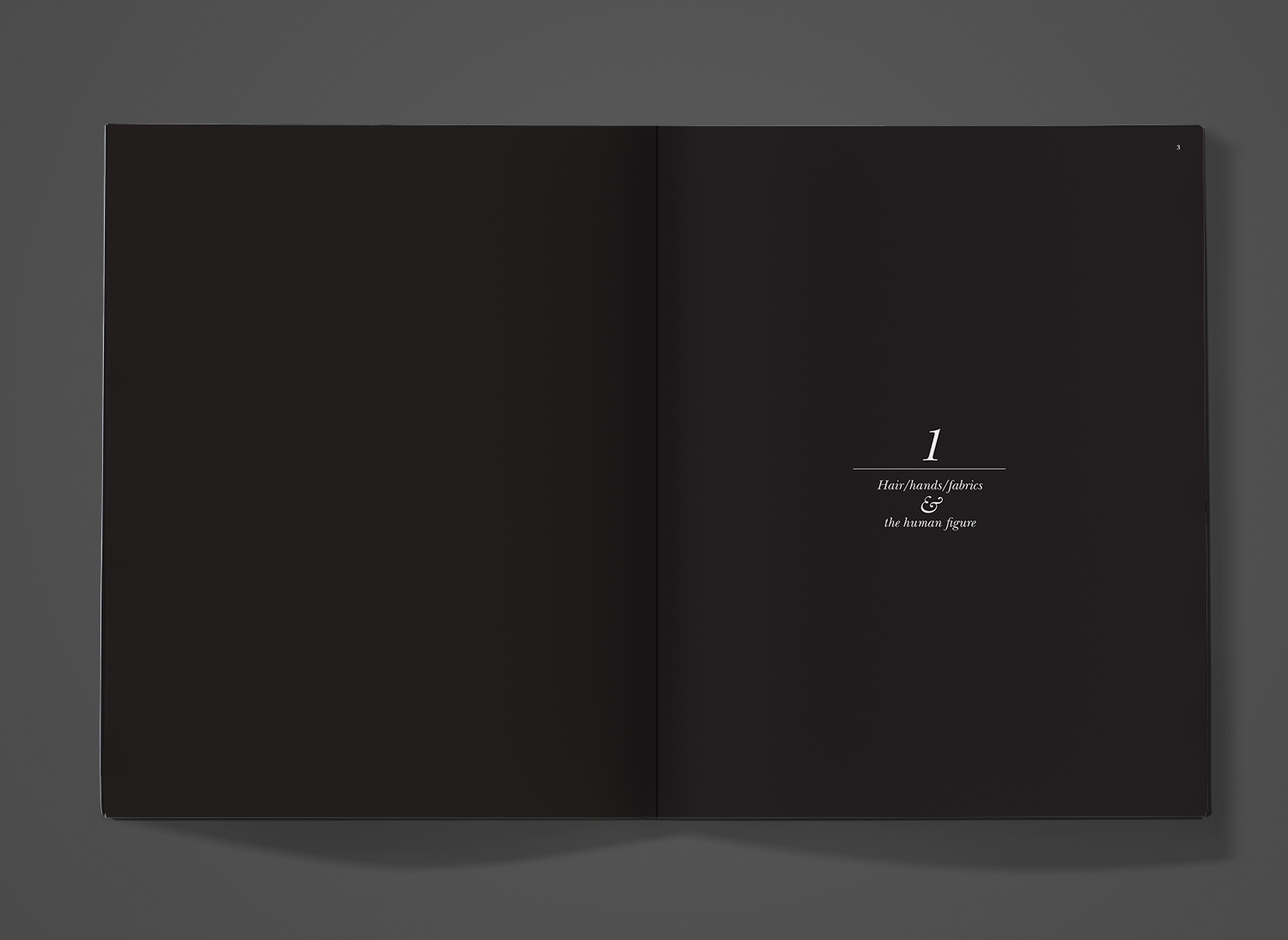 Tinas book spread 1.jpg
