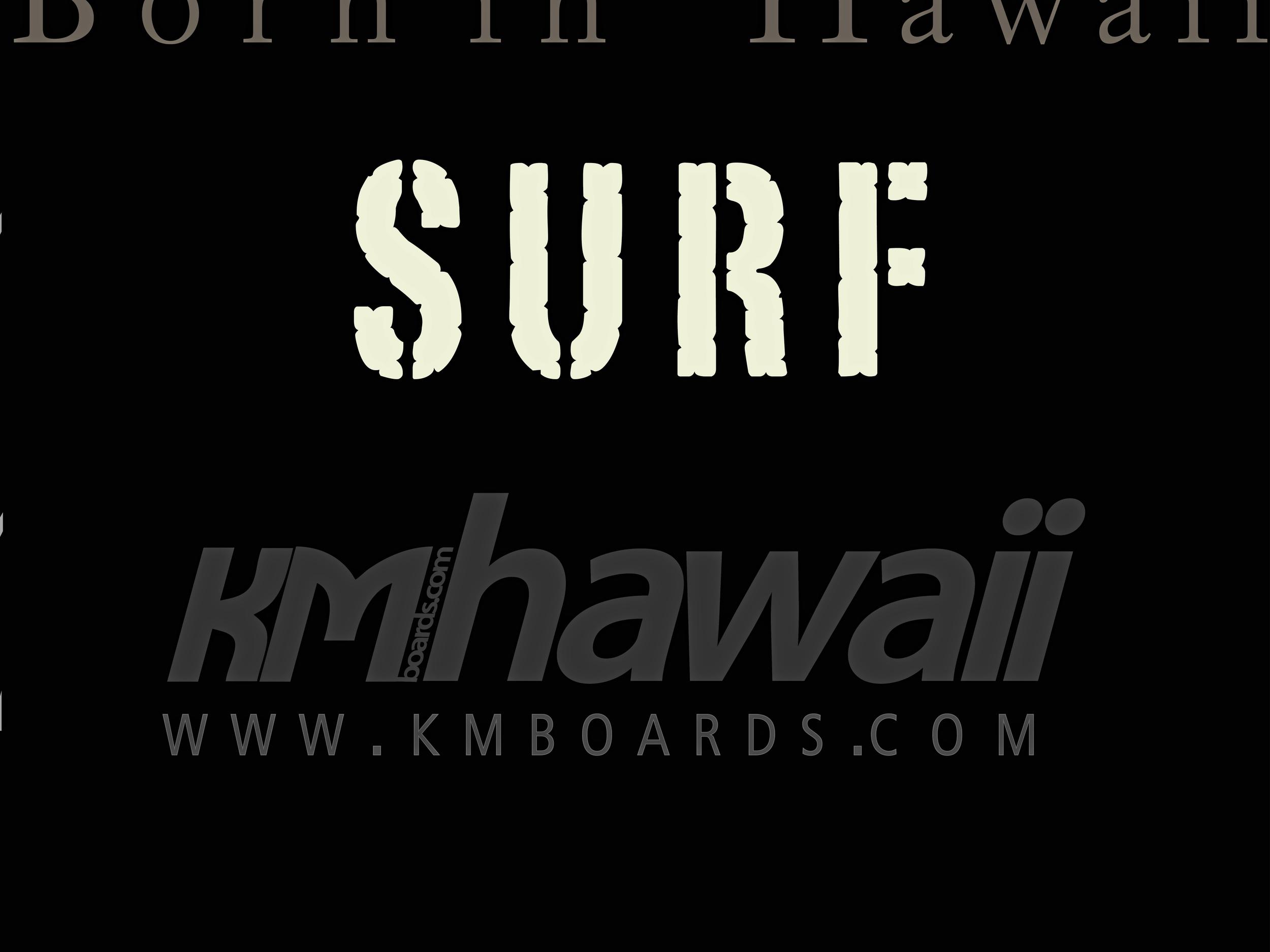 SURF inside-Draft Nov 12-1.jpg