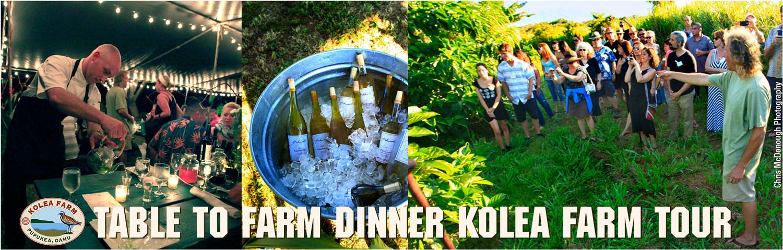 Table-to-Farm-Dinner-2-w.jpg