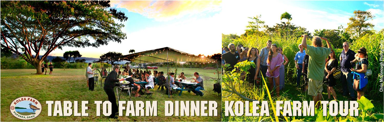Table-to-Farm-Dinner-1-w.jpg