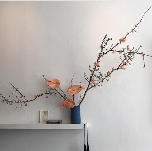 flowerr.jpg