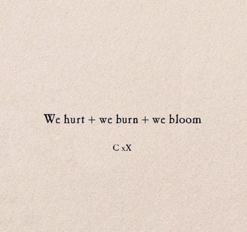we burn we bloom - Copy.png