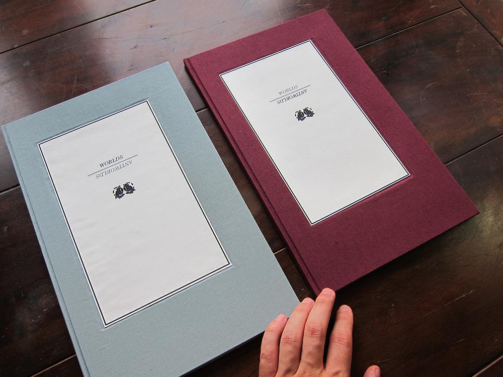 02 Both Books covers w.jpg