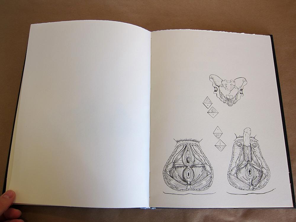 17 Book Open w.jpg
