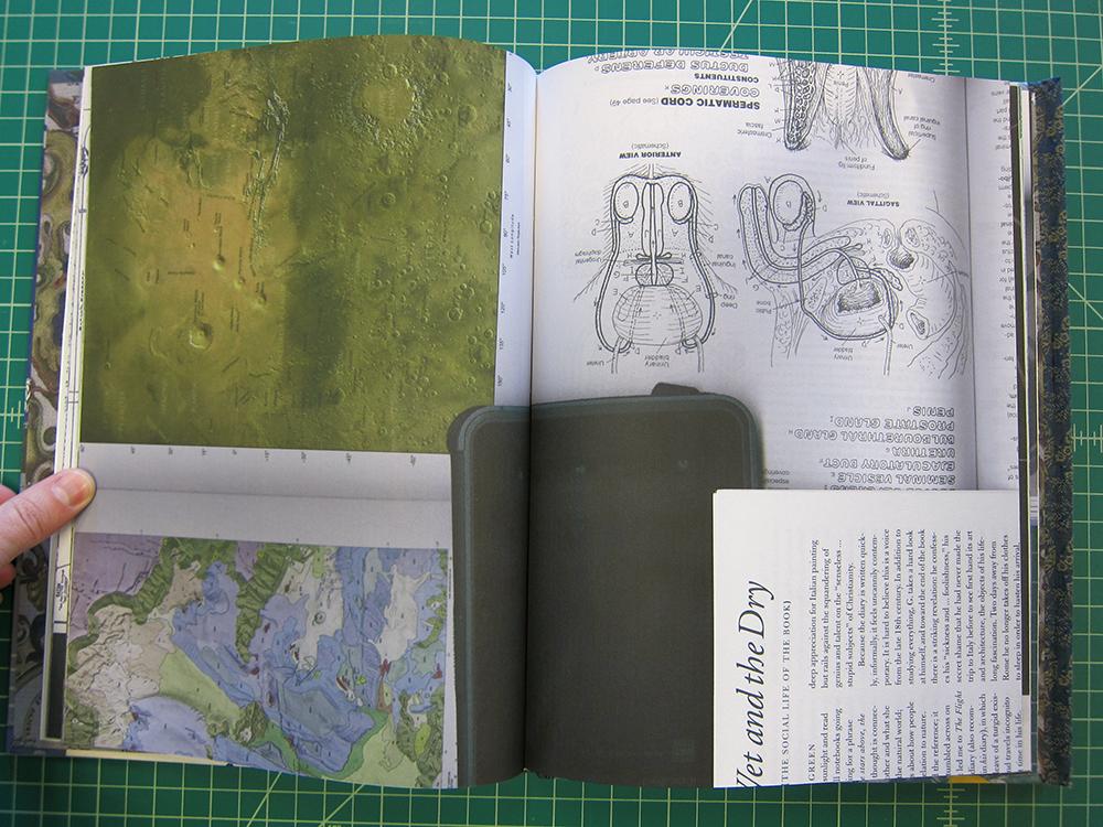 Janus Inside 07w.jpg