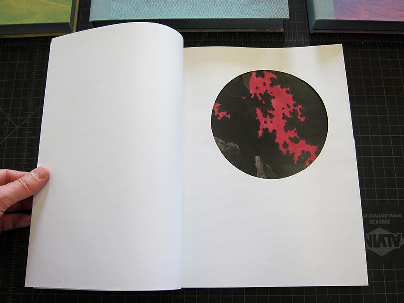 Book Open 13 w.jpg