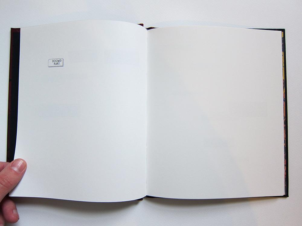Book Open 08 w.jpg