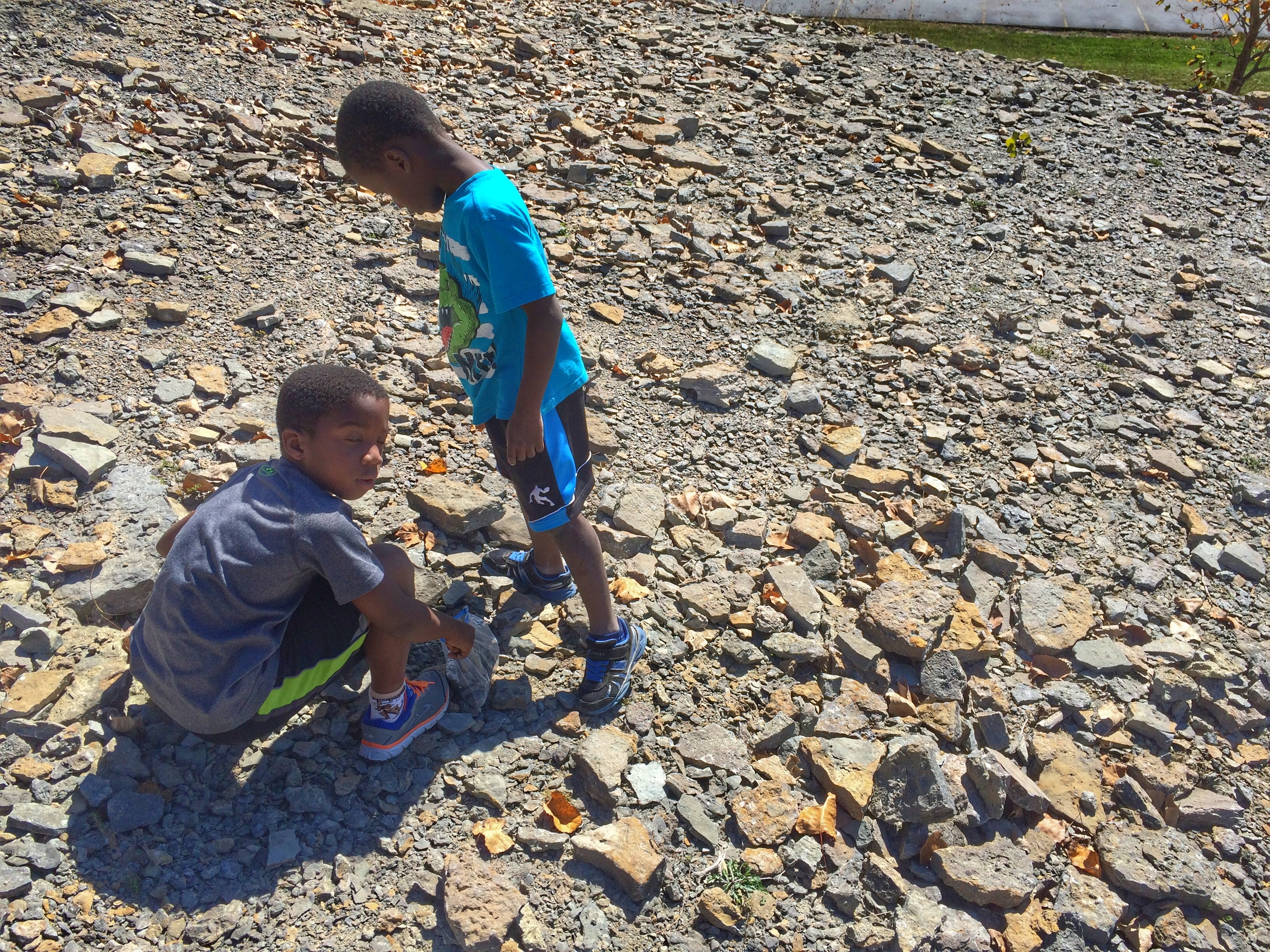 boys at trammel fossil park