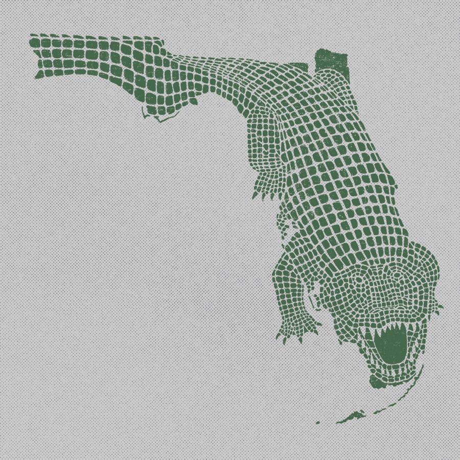 Florida_Gator.jpg