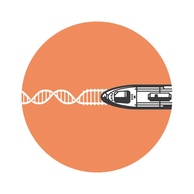 DNA-03.jpg