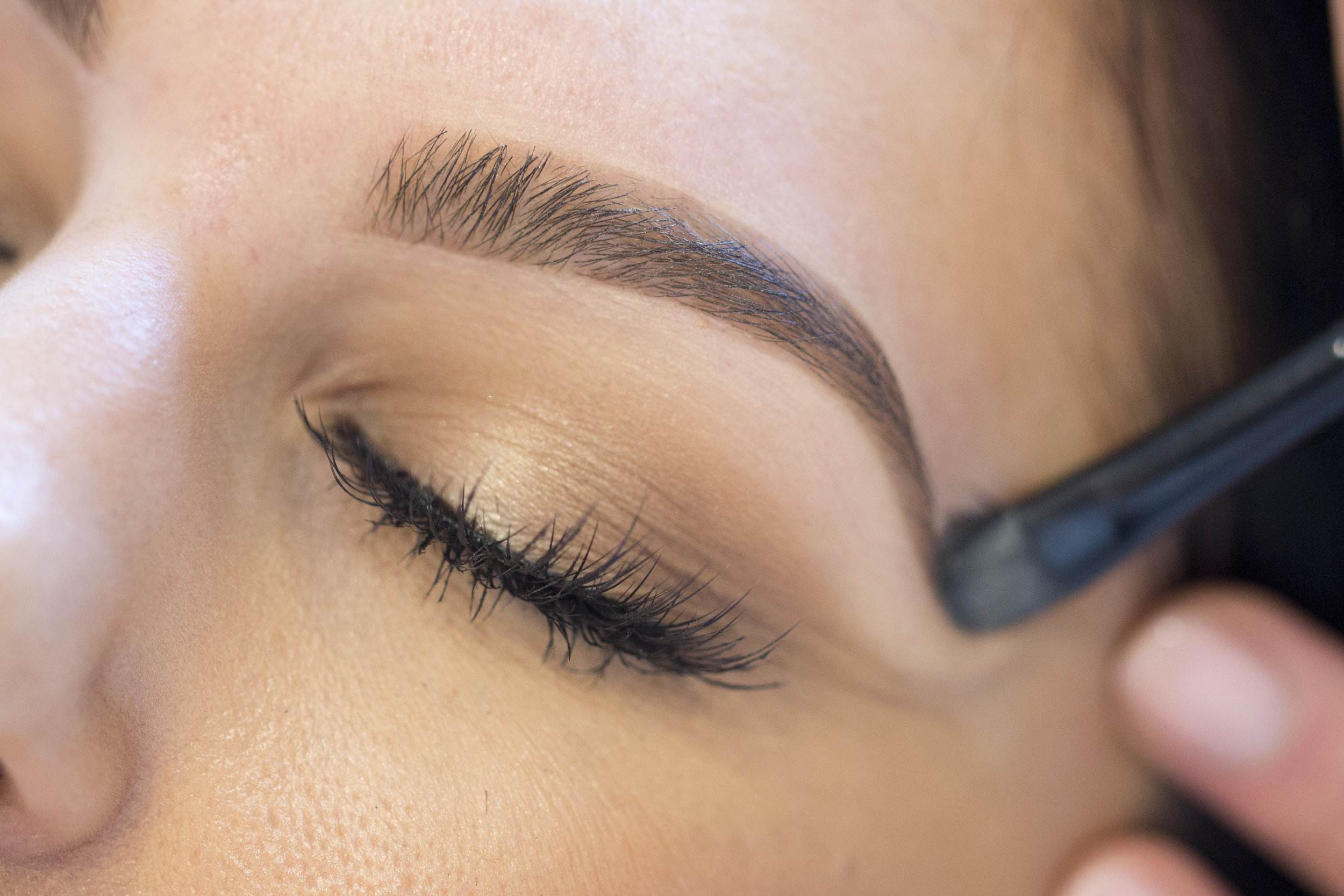 COPY-TPMEyebrows_0B5B4038.jpg