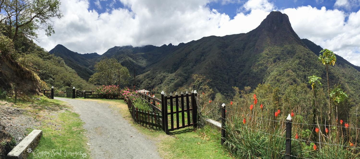 Valle de Cocora 034.jpg