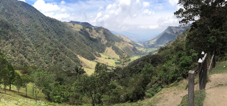 Valle de Cocora 035.jpg
