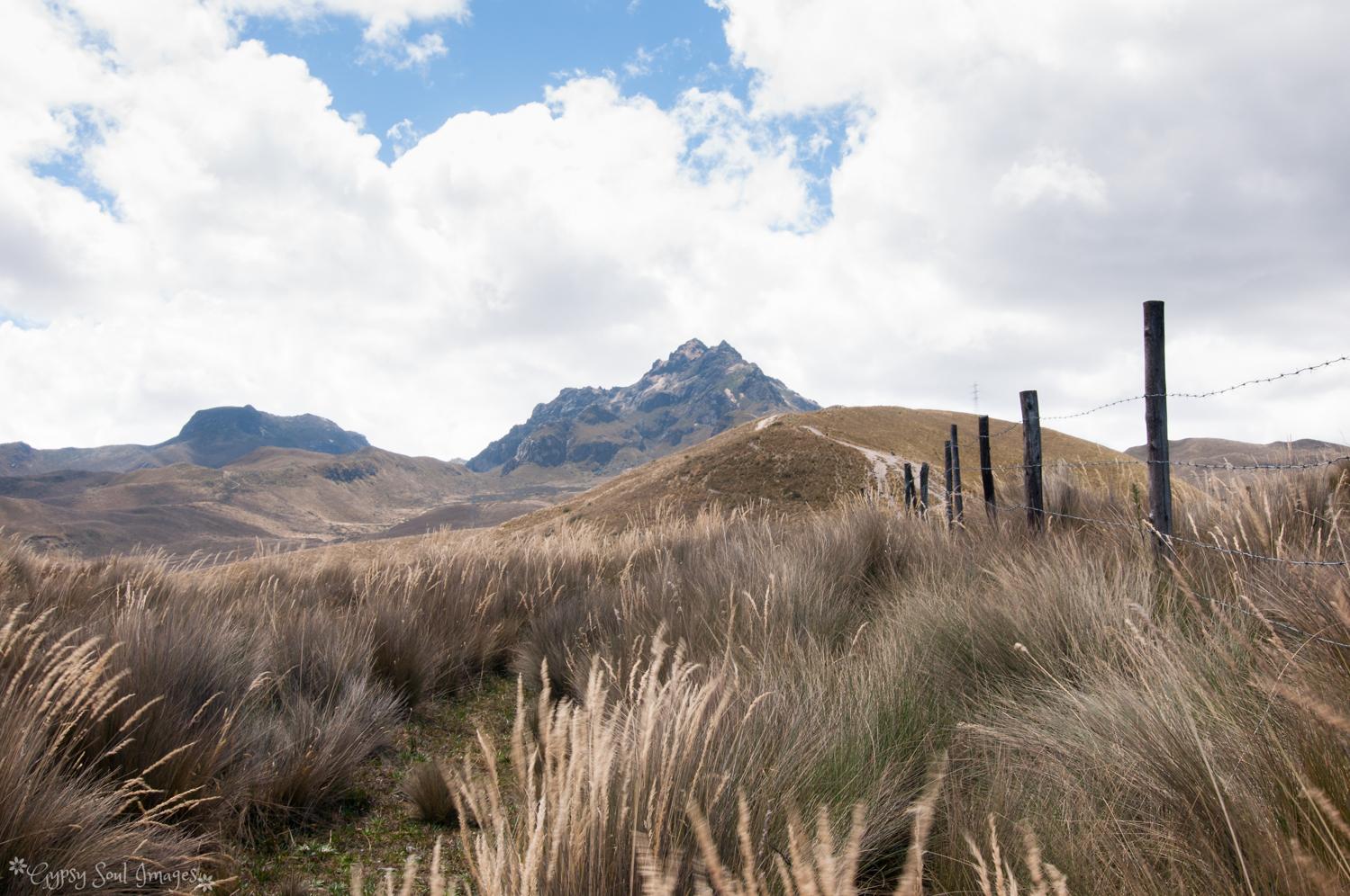 Quito 025.jpg