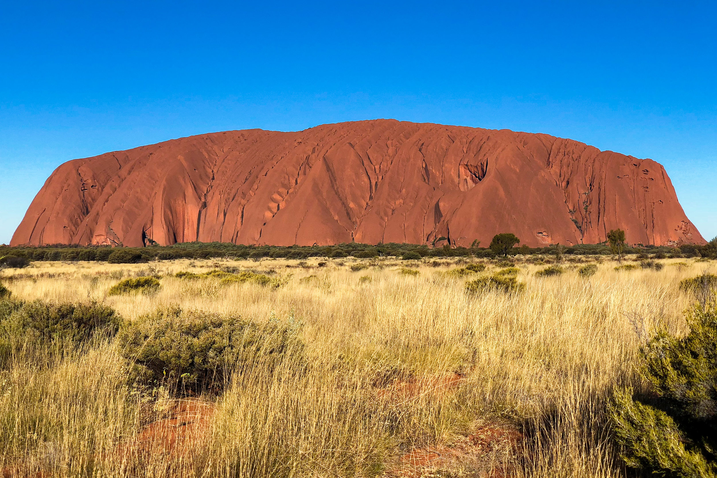 THE RED CENTRE -