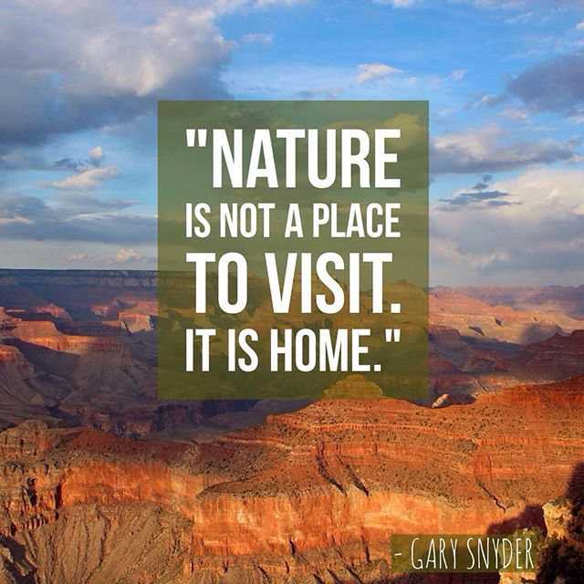 Did you get a chance to explore #nature this weekend? #naturelovers