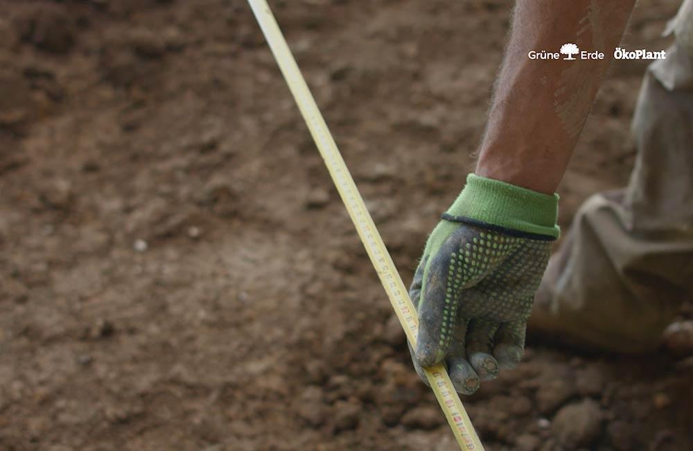 unsere-projekte-gruene-erde-welt-almtal-oekoplant-12.jpg