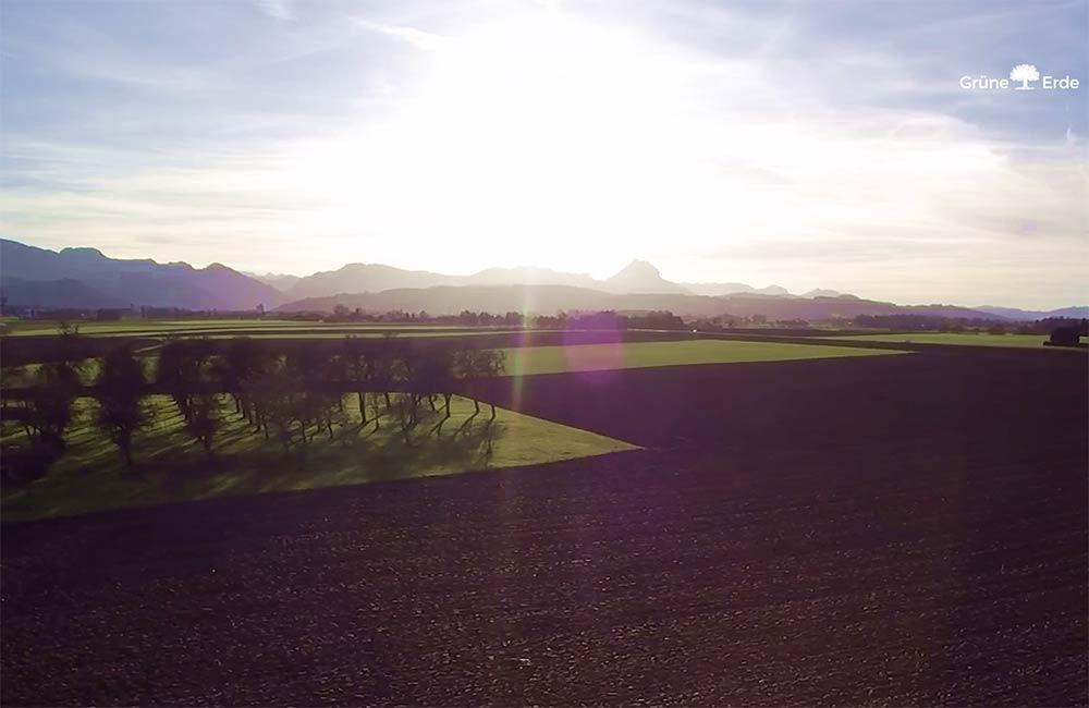 unsere-projekte-gruene-erde-welt-almtal-oekoplant-15.jpg